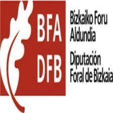 DIPUTACION FORAL BIZKAIA250x250