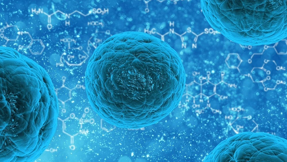 Staphylococo aureus resistente