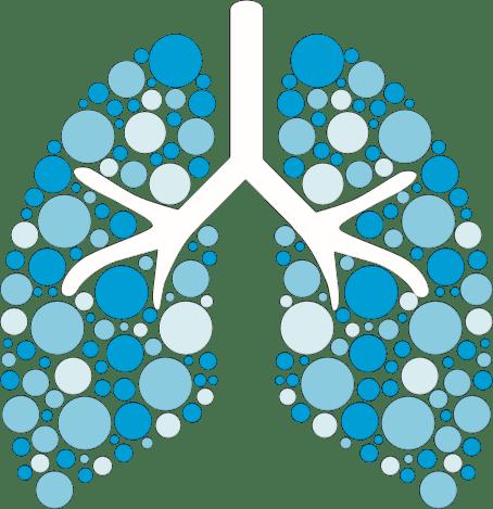 pulmones fibrosis quistica