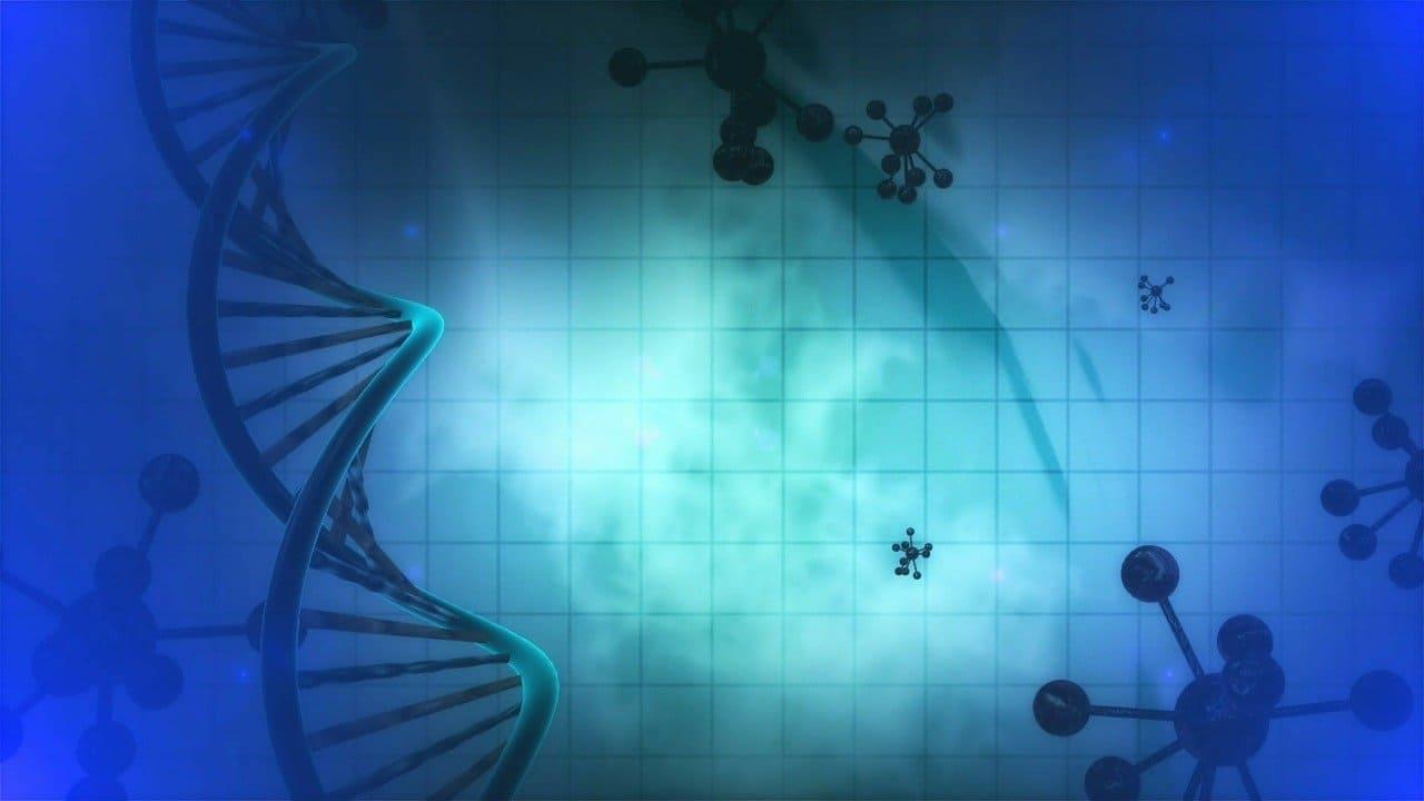 organoides proteostasis