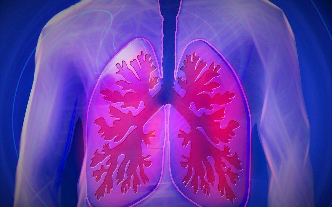 Según un estudio francés, ORKAMBI puede ayudar a la salud pulmonar y la eliminación del moco