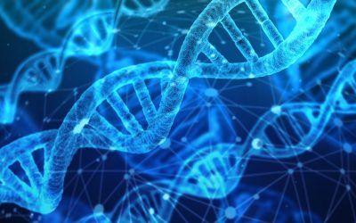 La forma de producir ARN de alta pureza y rendimiento puede ayudar al tratamiento de la FQ